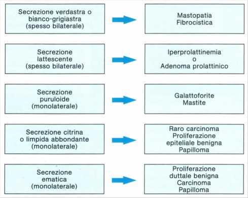 Linfa Associazione Contro Il Cancro Onlus Patologia